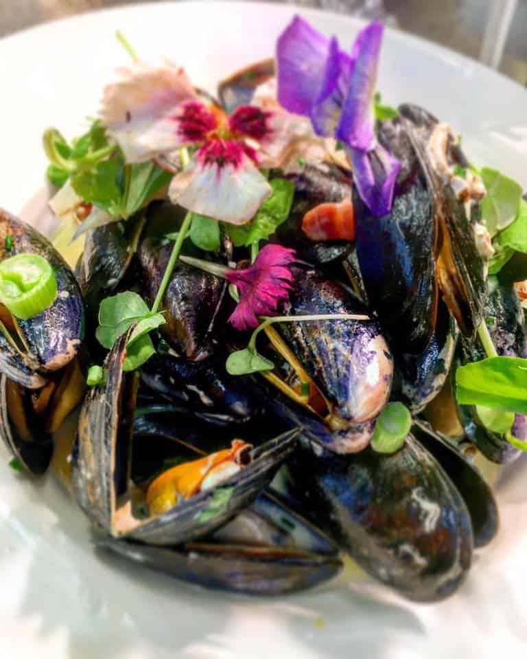 Mussels, Etive Restaurant Oban